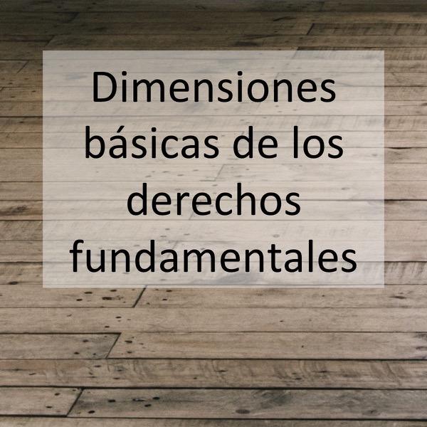 Dimensiones básicas de los derechos fundamentales